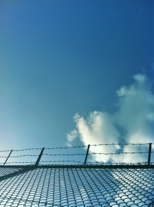 1390183_barbed_wire.jpg